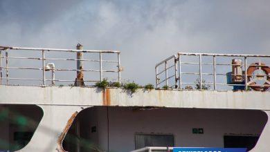 παροπλισμένο πλοίο της ακτοπλοΐας 3, Αρχιπέλαγος, Ναυτιλιακή πύλη ενημέρωσης